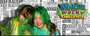Wild n Wacky Birthday Party
